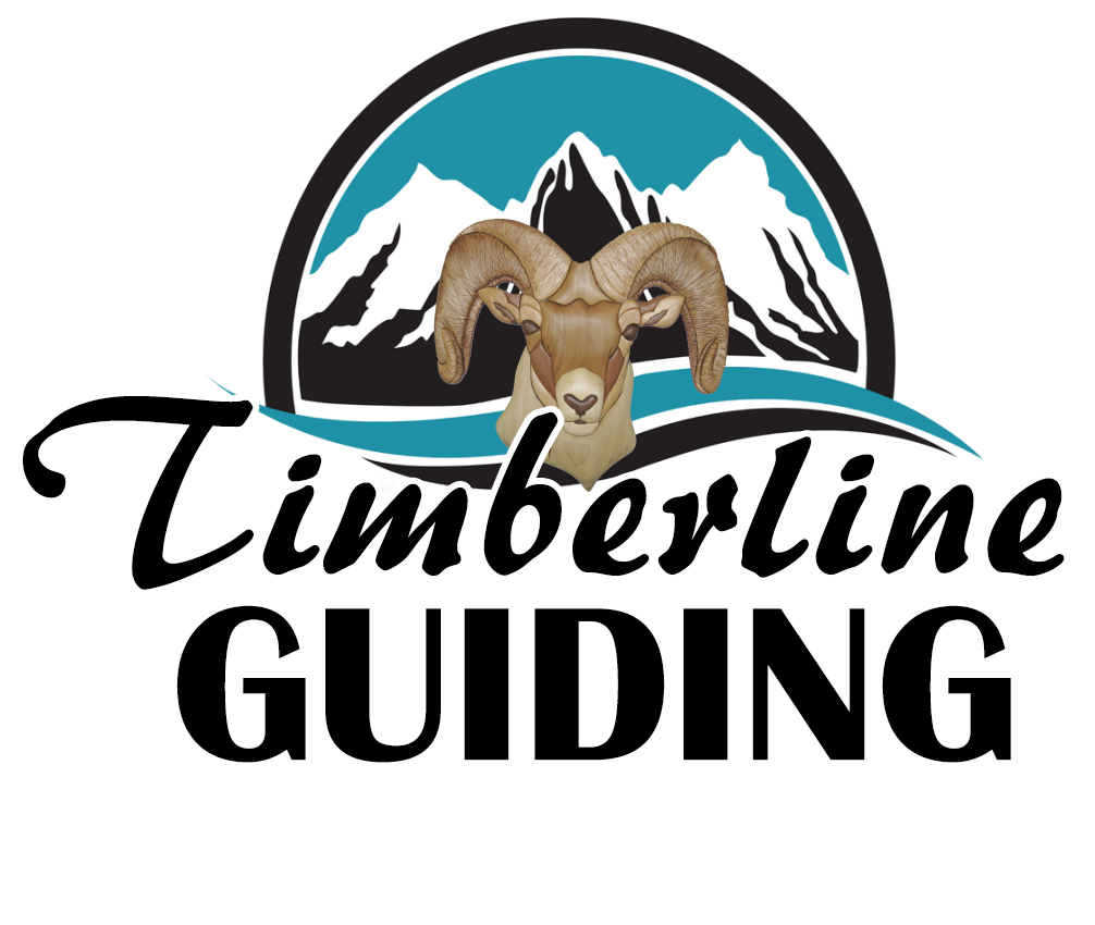 Timberline Guiding Alberta Hunting Outfitters