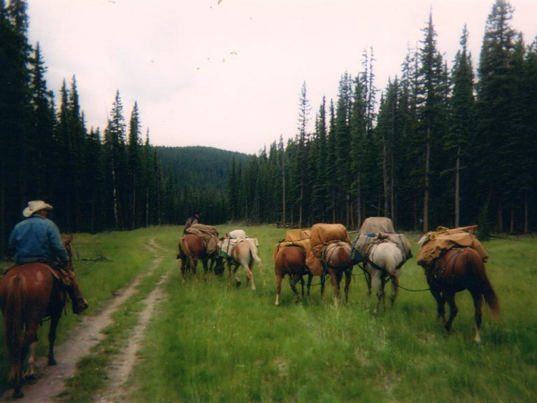 Timberline-Guiding-Alberta-Canada-Hunting9