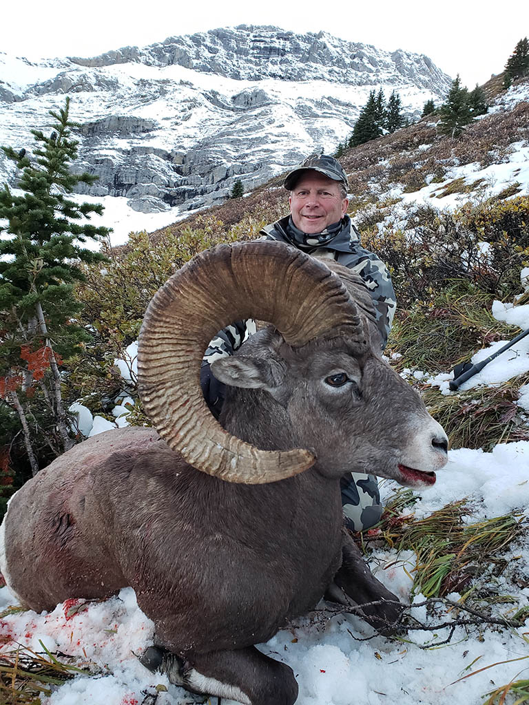 Timberline-Guiding-Bighorn-Sheep-Hunting14
