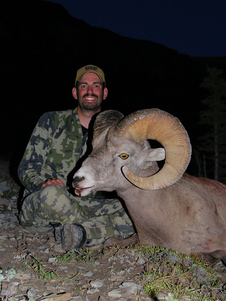 Timberline-Guiding-Bighorn-Sheep-Hunting16