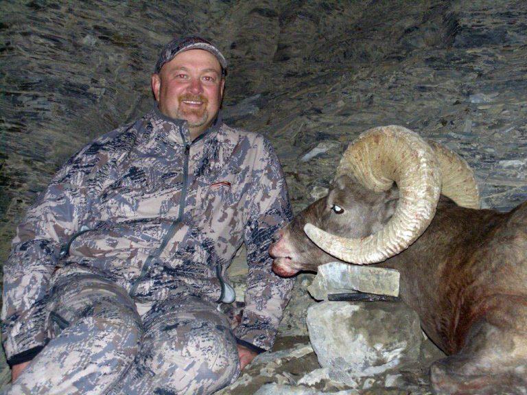 Timberline-Guiding-Bighorn-Sheep-Hunting23