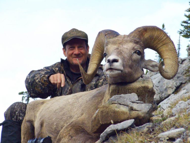 Timberline-Guiding-Bighorn-Sheep-Hunting25