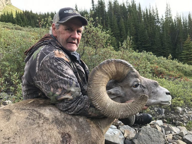 Timberline-Guiding-Bighorn-Sheep-Hunting8