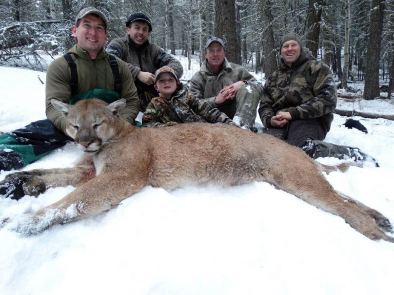 Timberline-Guiding-Cougar-Hunting1