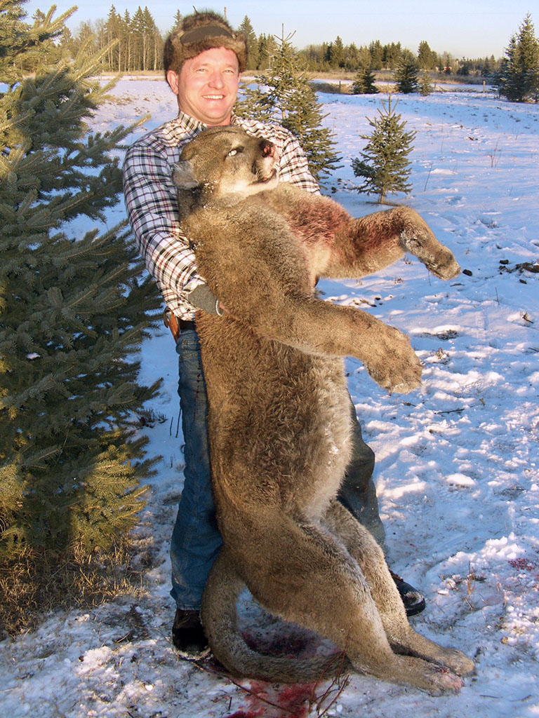 Timberline-Guiding-Cougar-Hunting13