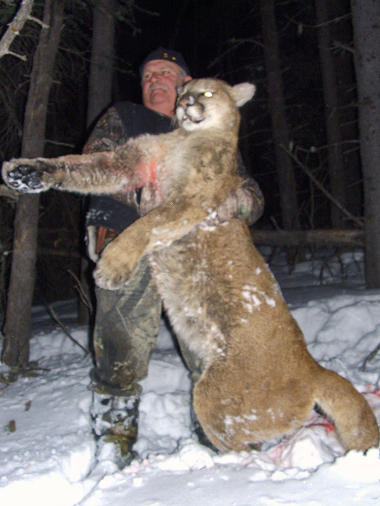 Timberline-Guiding-Cougar-Hunting14