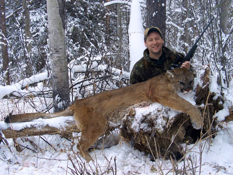 Timberline-Guiding-Cougar-Hunting17