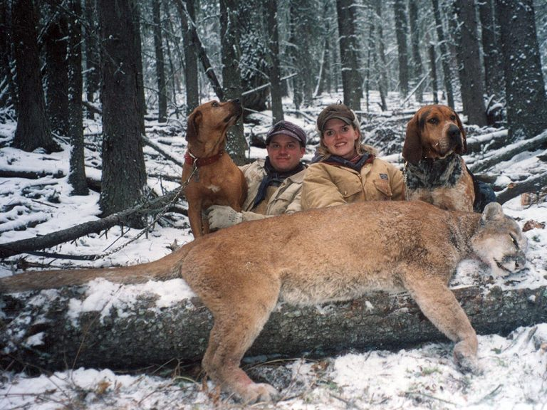 Timberline-Guiding-Cougar-Hunting18
