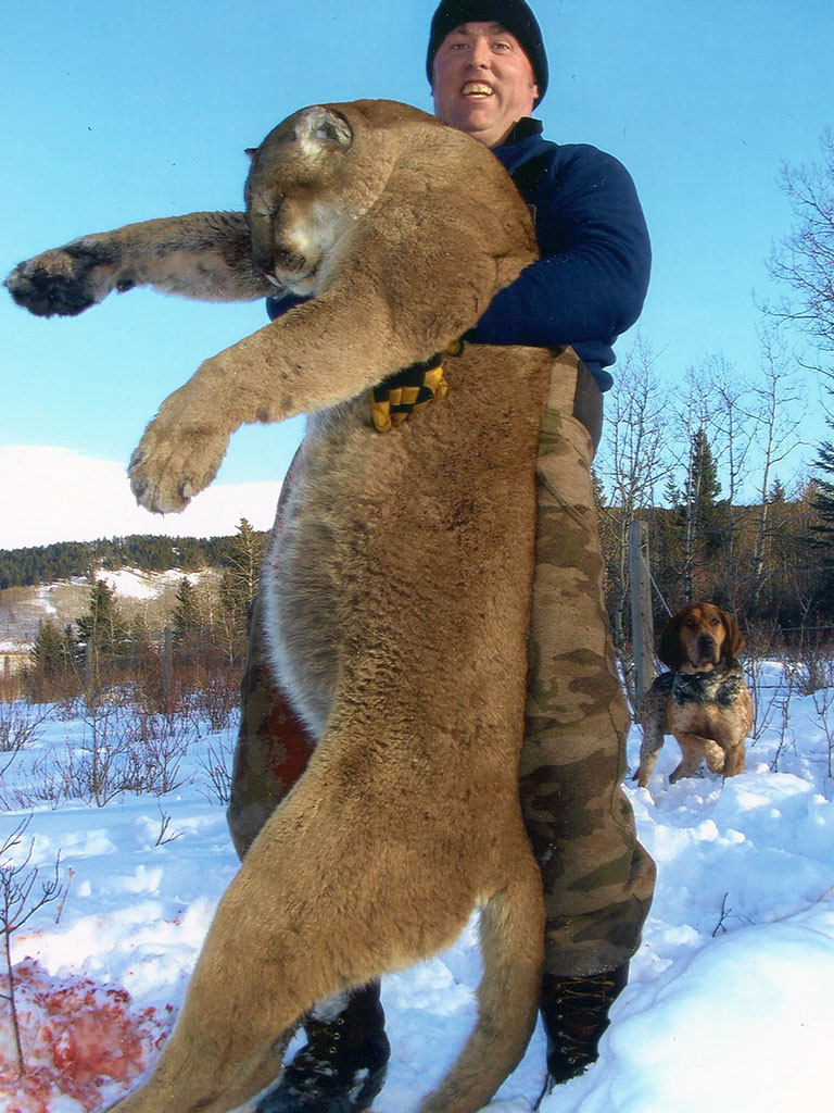 Timberline-Guiding-Cougar-Hunting21