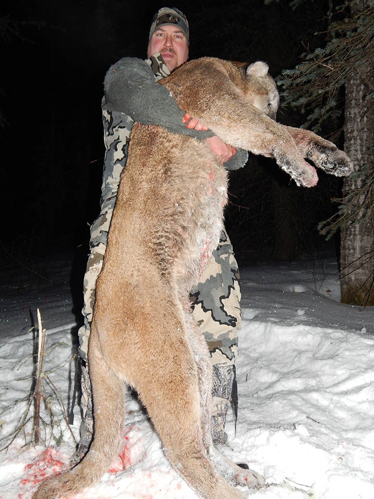 Timberline-Guiding-Cougar-Hunting4