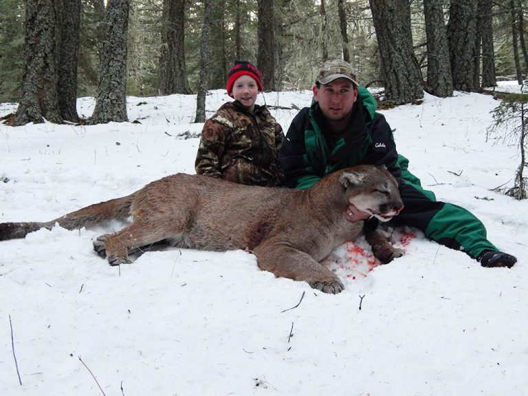 Timberline-Guiding-Cougar-Hunting7