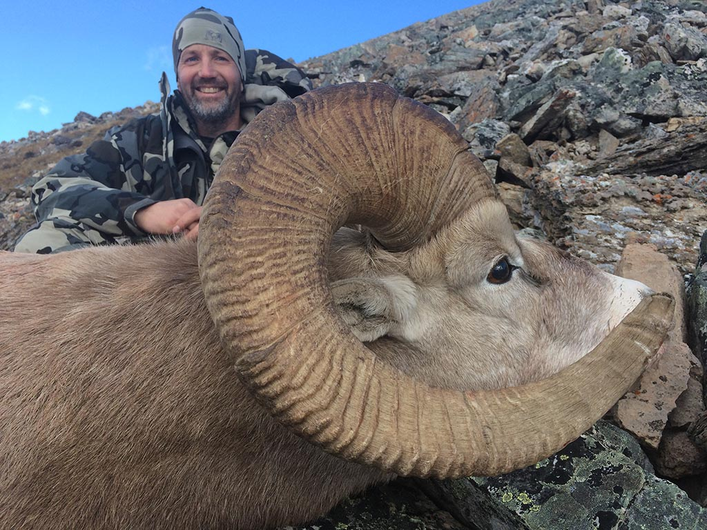 Big Horn Sheep Hunting Outfitters