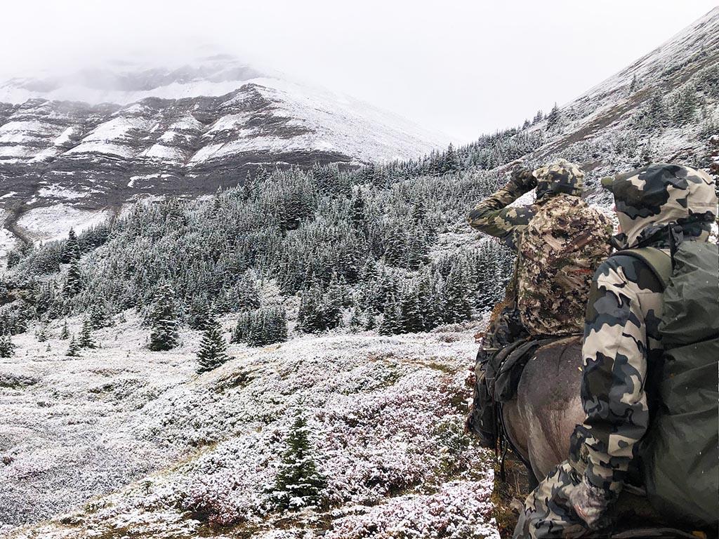 Mule Deer Hunting Outfitters Alberta Canada
